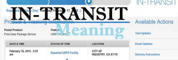 what does in transit mean